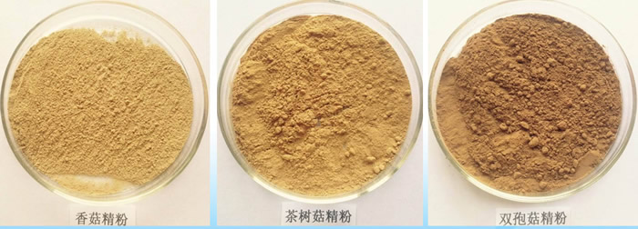 酶解 香菇粉