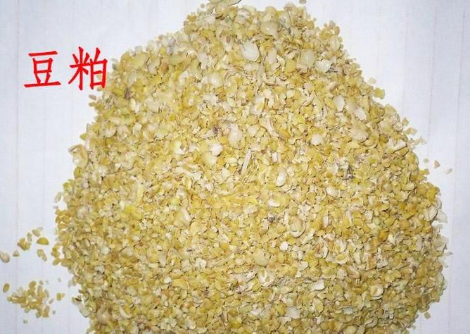 豆粕水解专用酶