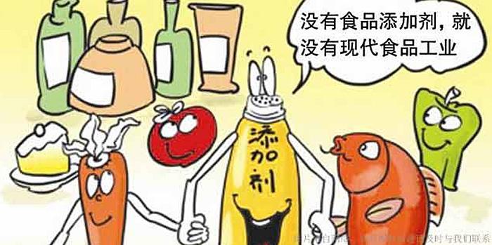 食品添加剂 酶制剂