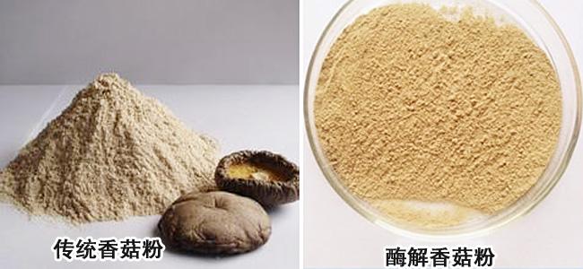 香菇粉 酶解香菇粉