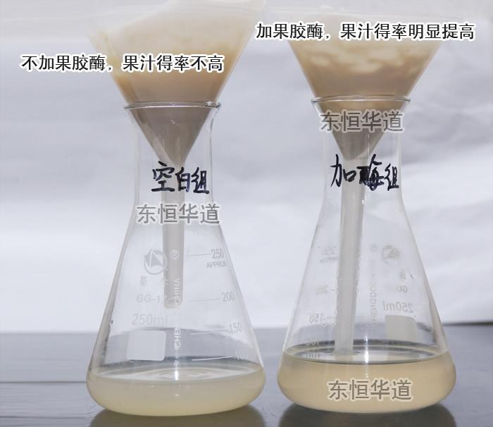 果胶酶处理果汁