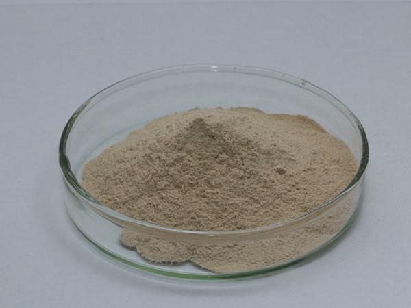 羽毛角质蛋白水解酶(羽毛粉饲料酶,角蛋白酶)