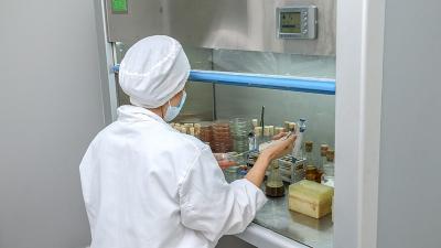 酶制剂菌落检测