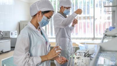 酶制剂复配技术研发